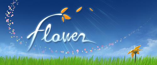 20090119-flower